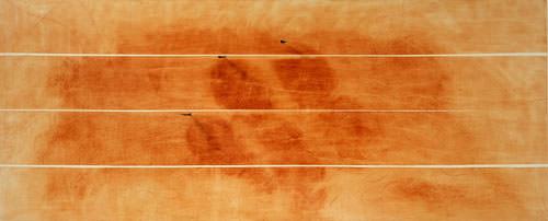 Giuseppe Penone 1998 eliopittura su tela + Bronzo 124x290x12.5 cm 1